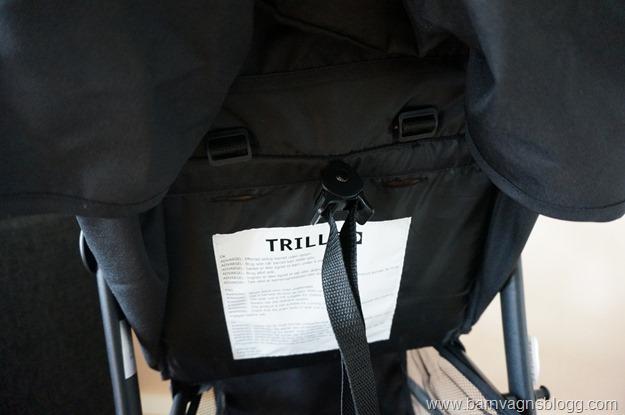 Trille-Fiji-26