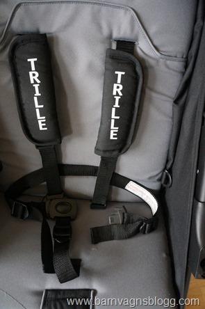 Trille-Fiji-34